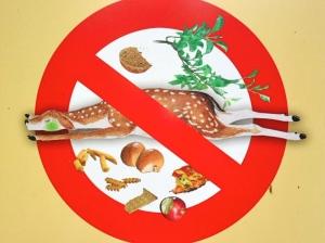 füttern verboten