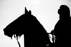 Pferd und Reiter schwarze Silhouette