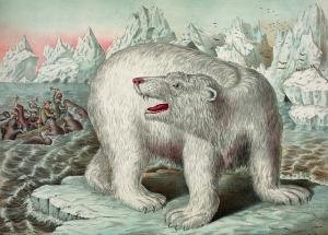eisbaer-nordpol-true-north